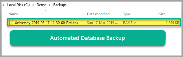 Automated database backup