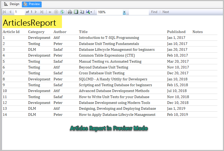 SSRS Reports Development in Simple Terms | {coding}Sight