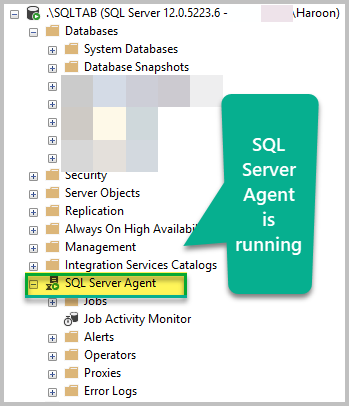 Making Sure SQL Agent is Running