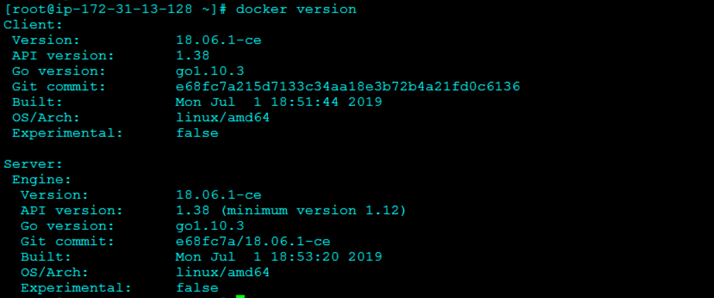 Checking the Docker Version