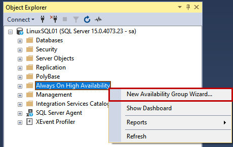 The Availability group wizard starts.