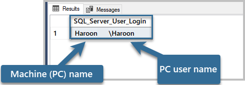 The output of the query to define the SQL Server login connected to the Server