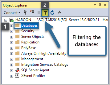 Filtering the databases