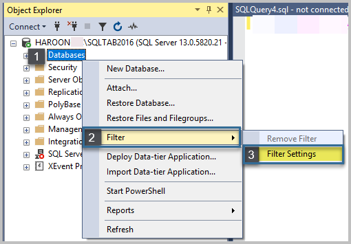Right-click on the Databases node and go to Filter -> Filter Settings: