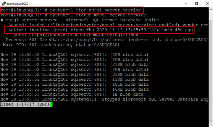 Picture 7. Checking the service status on Linux