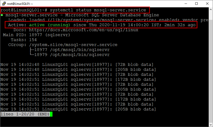 Picture 9. View the SQL Server services status on Linux