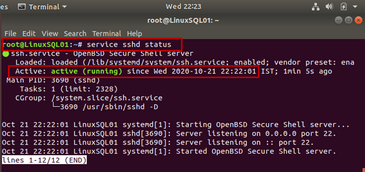 The output of the command after the SSH package installation