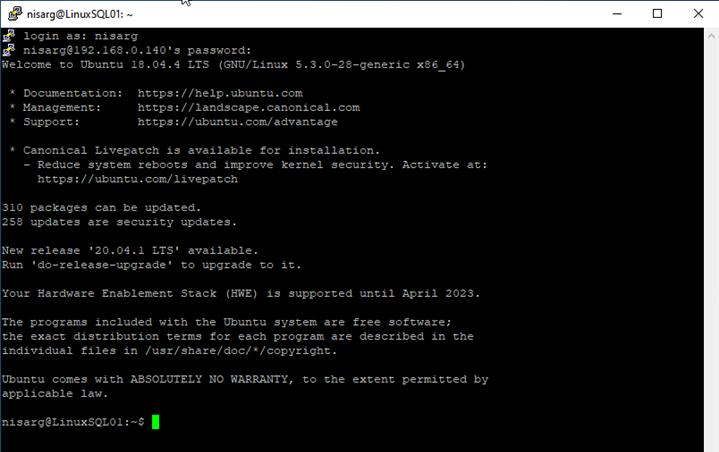 PuTTY command line window