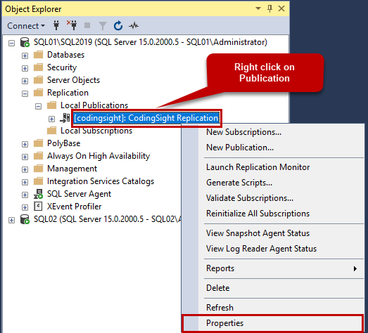 Right-click on Publication and select Properties